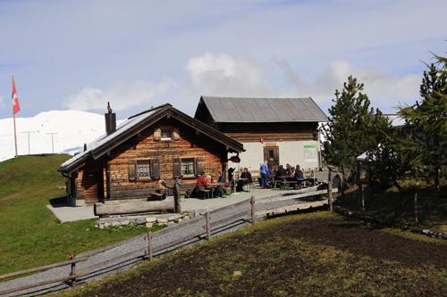 Die Ochsenalp ist im Sommer geöffnet