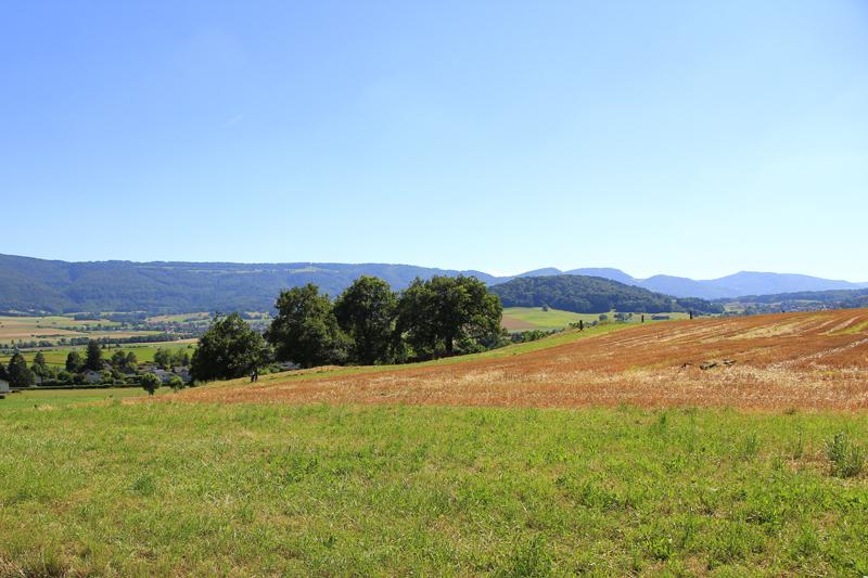 Vom Sitz in Delémont aus hatte man einen wunderbaren Blick in den Jura